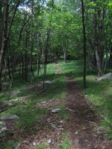 Split Rock Bouldering Trail