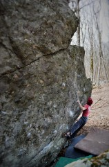 """Wildwood Flower""(V7)"